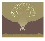 Creationfoto Photography logo